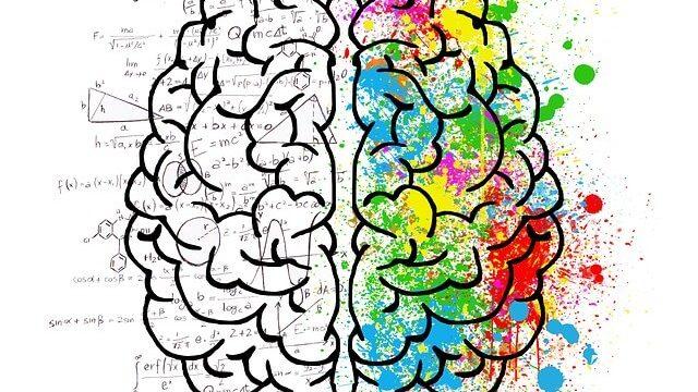 脳が冴える習慣